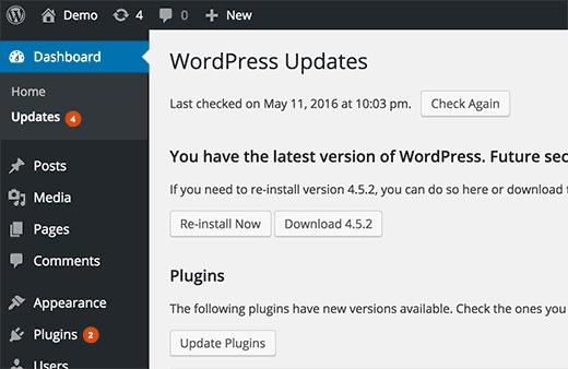 wordpress update my site